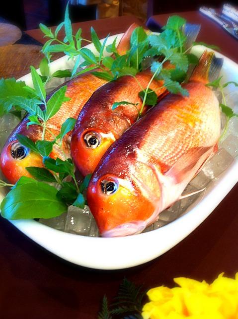 鯛の仲間じゃないんです!旬の「甘鯛」の特徴とおすすめレシピ12選
