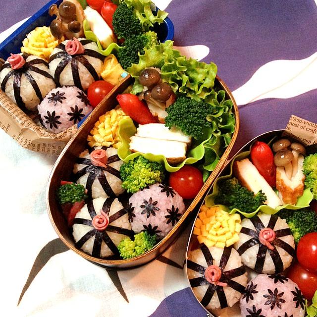 海苔だけで上級者っぽく♩「手毬おにぎり」なら和のお弁当もお手のもの!