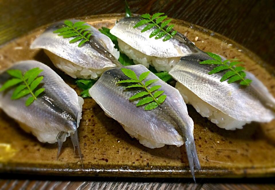 ご飯を借りるほどおいしい魚!? 「サッパ」の特徴とおいしい食べ方
