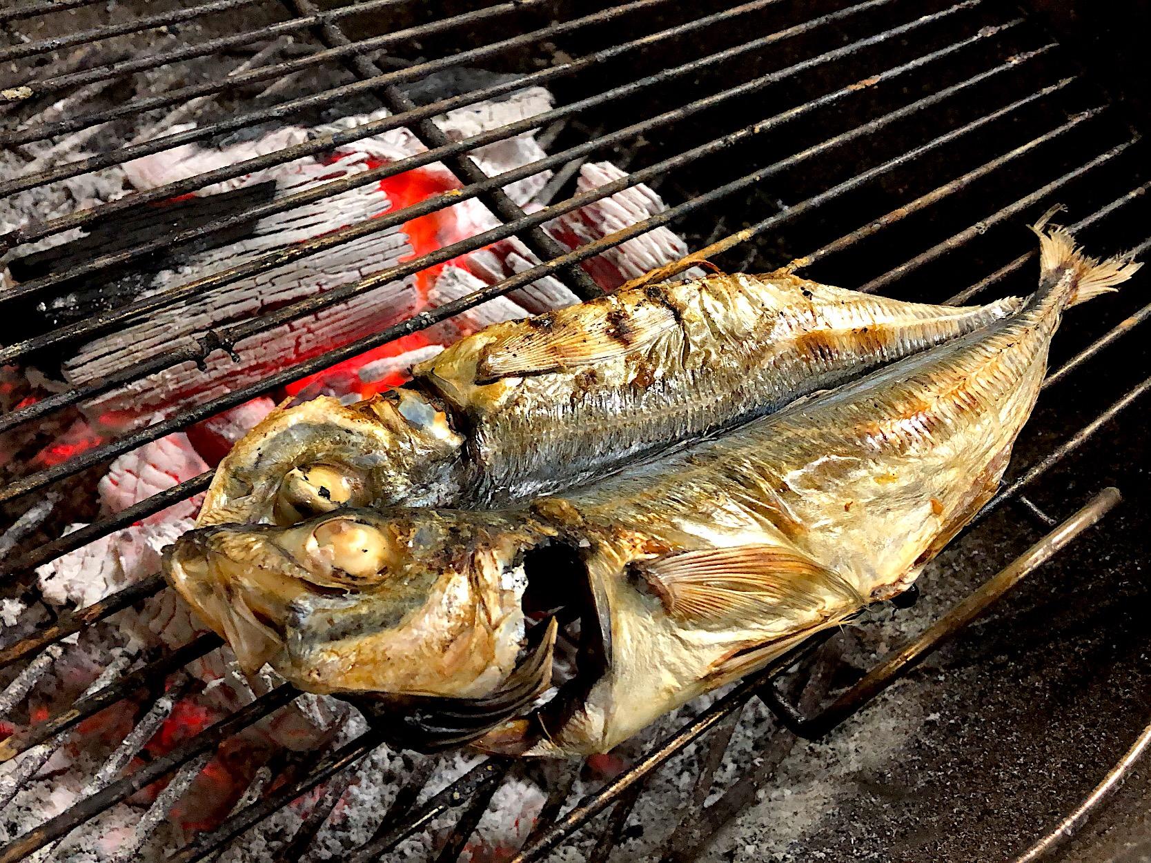 おいしいアジ(鯵)の種類!特徴や旬の時期、味わいを徹底解説の画像