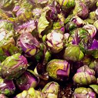 Simple Sautéed Farmer's Purple Brussel Sprouts with Olive Oil & Garlic