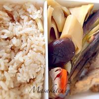 Bamboo shoot lunch box