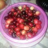 CHERRY!!!!!!CHERRIES!!!!!!@&@&