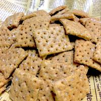 Sourdough Herb Onion Crackers