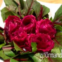 izoomさんの🎀  バラのアミューズ 紫キャベツのピクルス 🌹 【Amuse bouche of roses made of red cabbage pickles】