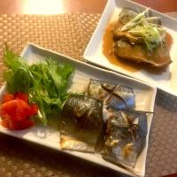 Mackerel simmered in miso&Salt Baked Mackerel🐟🐟鯖の味噌煮&鯖の塩焼き