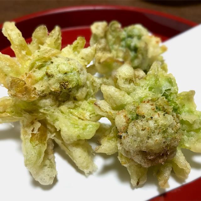 天ぷら ふきのとう 早春の味覚ふきのとうを天ぷらに。「てんぷら近藤」のレシピです