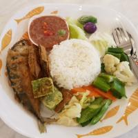 rice+mackarel fish with chili paste & vegetables