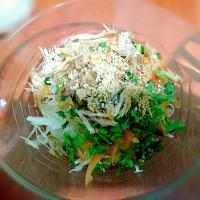 Dried chicken salad