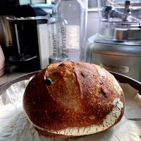 Cranberry Sourdough (pic 1)
